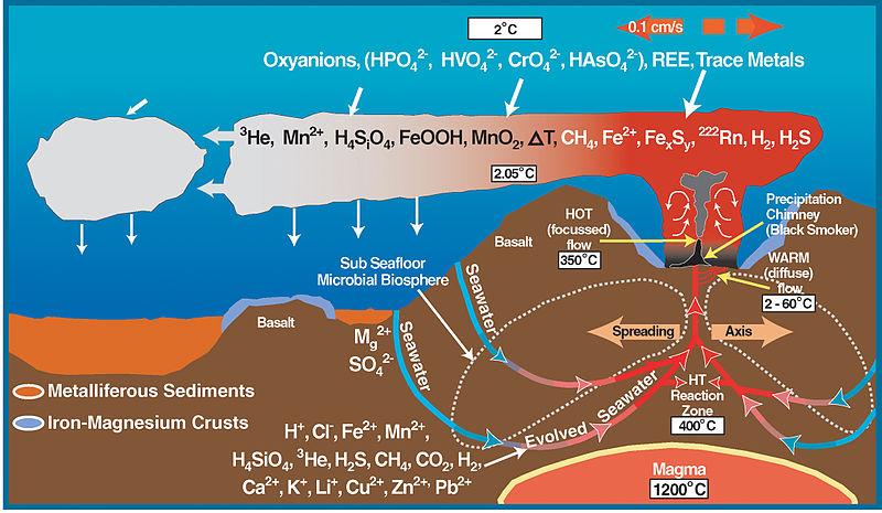 Hydrothermal Vents  U2013 Origin Of Life    U2013 Scientific Scribbles