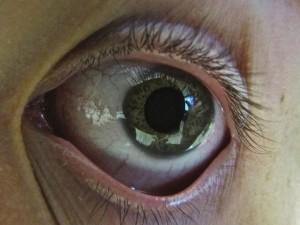 My Green Eye by Elliot Bennett