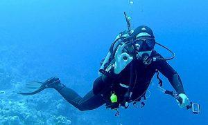 Diver giving OK signal