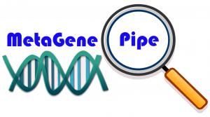 MetaGenePipe logo