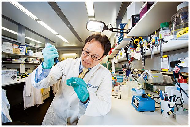Dr Ashley Ng