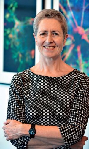 Professor Anne Kelso AO