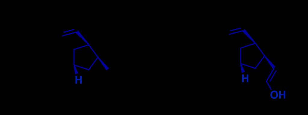 penicli