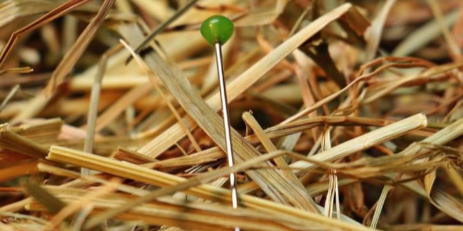 image of a needle in haystack, via Pixabay