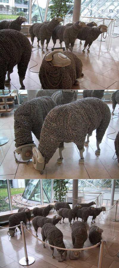 Phoney Sheep