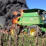 How to cook a Deere with sunflower oil