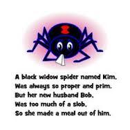 spider limerick