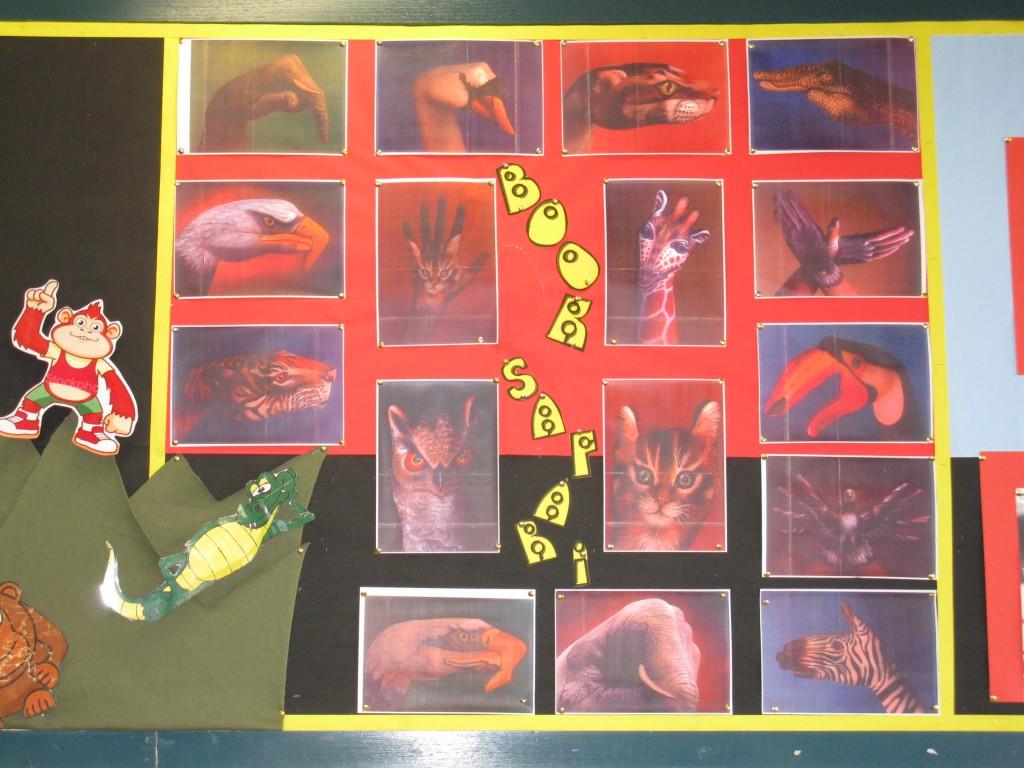 Displays August 2009 004