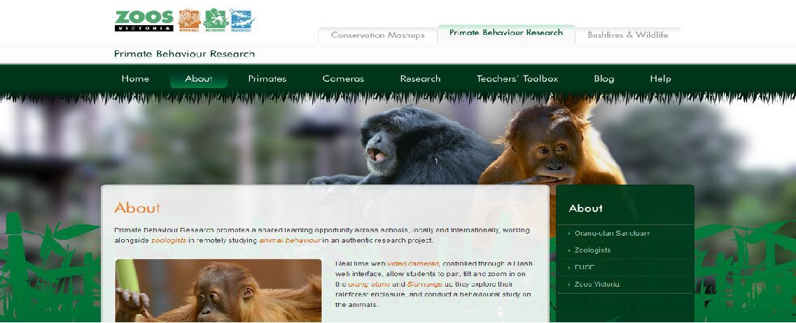 Primate behaviour research