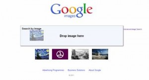 Drag and drop feature: Google images