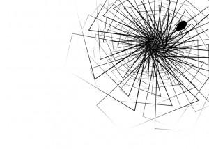 spider_web_by_banzan