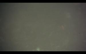 Screen Shot 2015-03-26 at 4.59.37 pm
