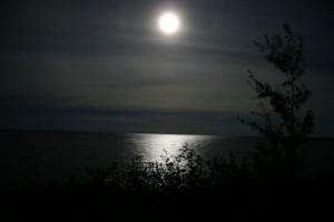 moonlight-night--large-msg-117807345376