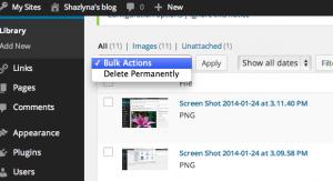 Screen Shot 2014-01-24 at 3.15.31 PM