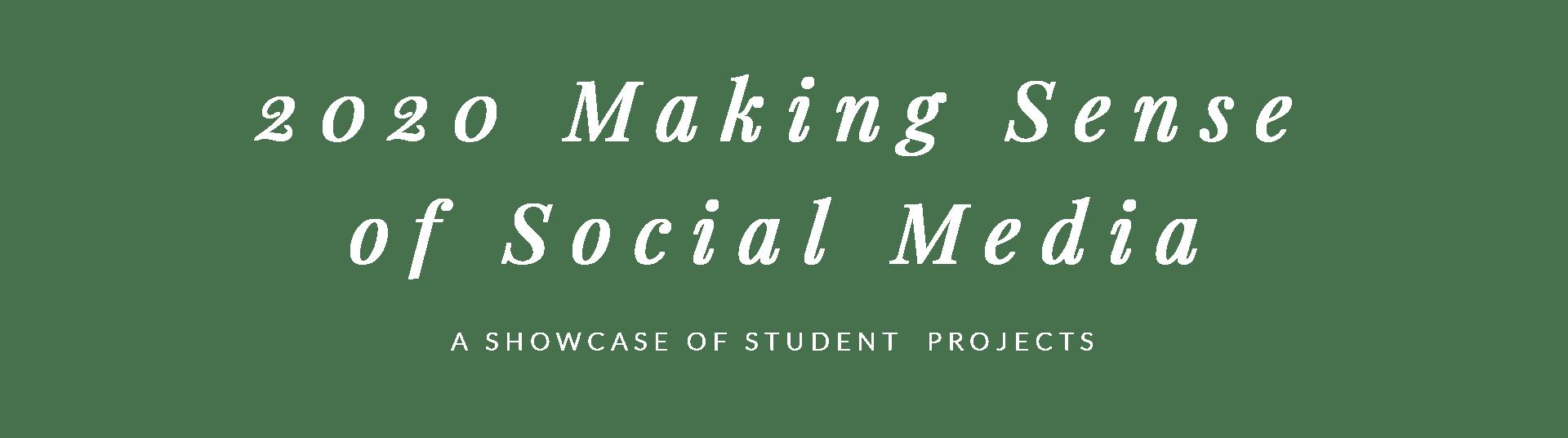 2020 Making Sense of Social Media
