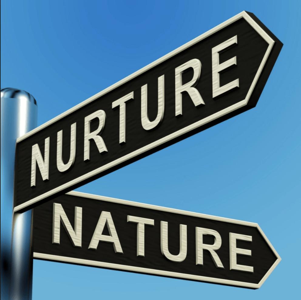 Identity: Nature VS. Nurture