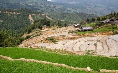 GSP-MCD-05: Humanitarian Engineering Internship in Vietnam