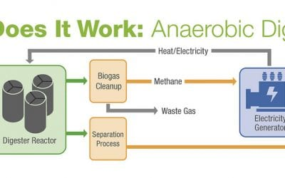 GSP-Rivalea-04: Anaerobic Digester Performance and Modelling of Power Generation