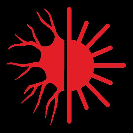 LAIN logo