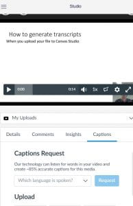 Screen shot of Canvas Studios with Caption tab selected