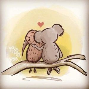 A koala comforts a kiwi