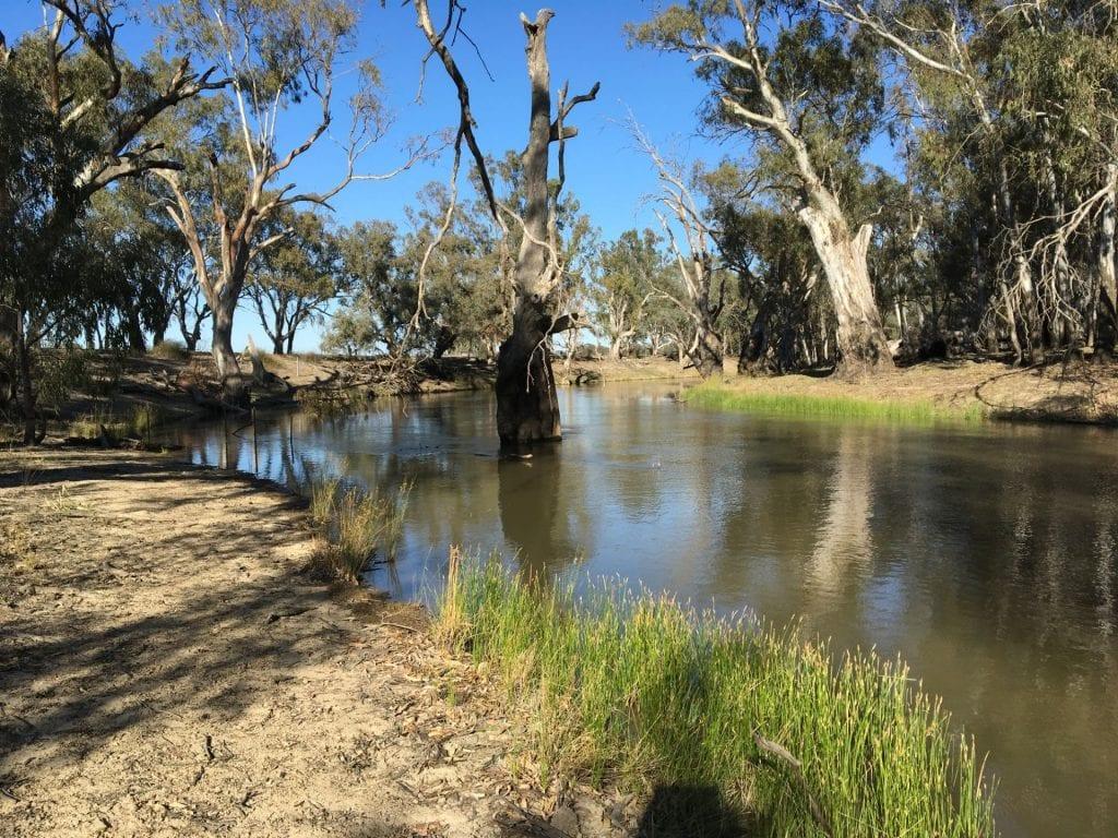 Yallakool Creek, NSW
